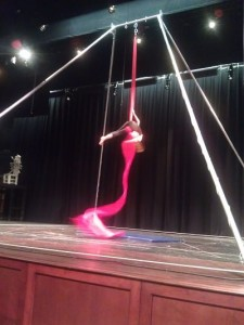 Image showing Circus Family Fun Night aerial artist
