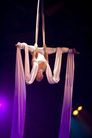 Image showing Circus Family Fun Night aerial artist on silks